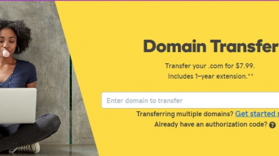 Guide to Godaddy Domain Transfers